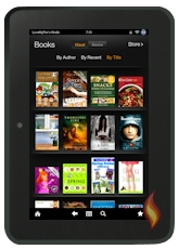 Books on my Kindle Fire