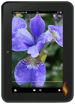 Kindle Fire Android With Customized Iris Wallpaper