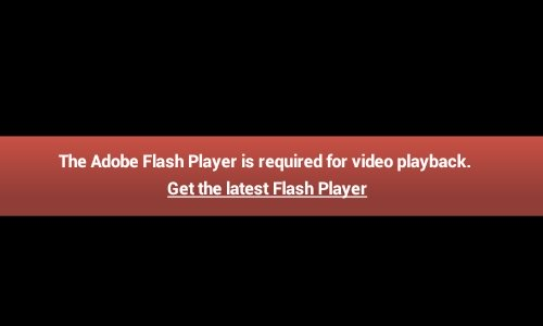 adobe player flash
