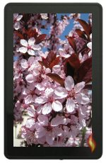 Kindle Fire Flower Wallpaper