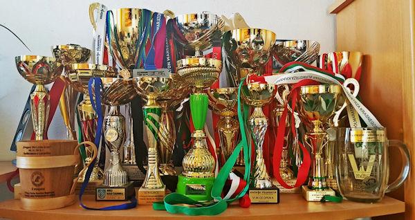 Olga's Running Trophies